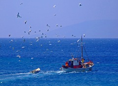 FISHING BOAT - KOUFONISIA