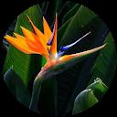 Immagine del profilo di elisa 09