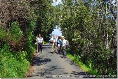 7741 La Laguna-Barranco del Lauarel(Camino a San Fernando)