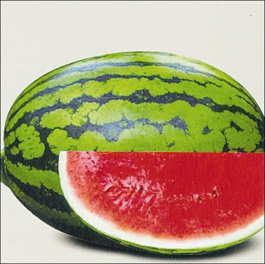 New-S101-Water-Melon-Seed-Hybrid-F1-