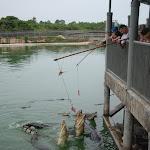 Тайланд 12.05.2012 6-00-28.JPG