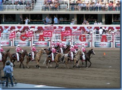 9533 Alberta Calgary Stampede 100th Anniversary - GMC Rangeland Derby & Grandstand Show - Calgary Stampede Showriders