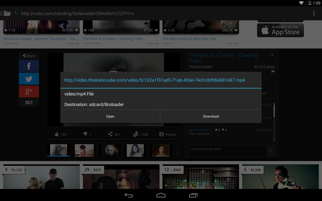 Video Downloader - screenshot