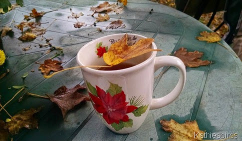 9. 10-17-14 Autumn tea