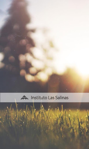 Instituto Las Salinas