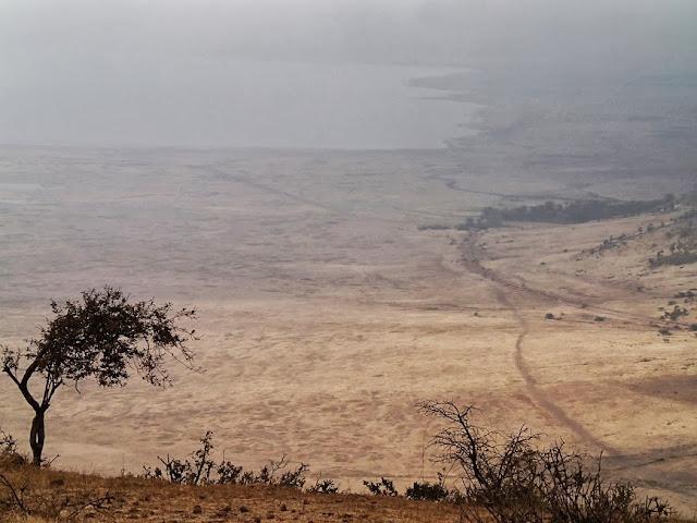 Serengeti2  003.JPG