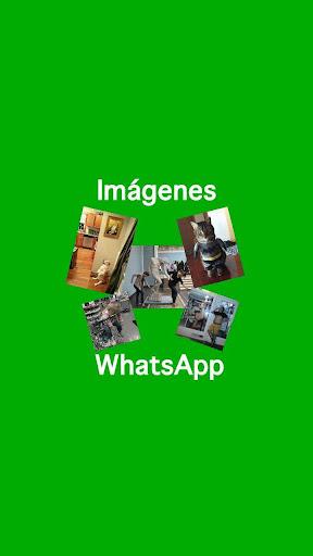 WhatsApp的图片