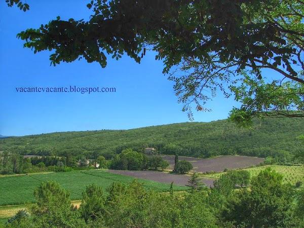 drom provencal 3.jpg