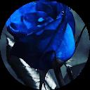 Blue Butterfly00