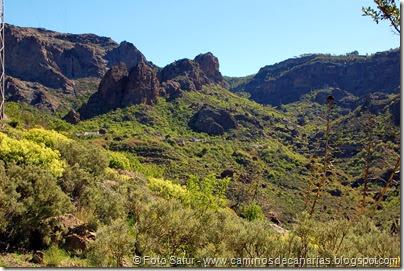 7646 El Aserrador-Paso Herradura(Ayacata)
