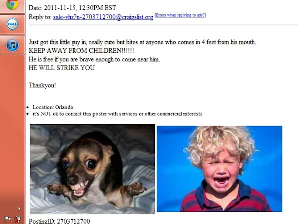 ♥ Friday Funny–Craigslist ♥