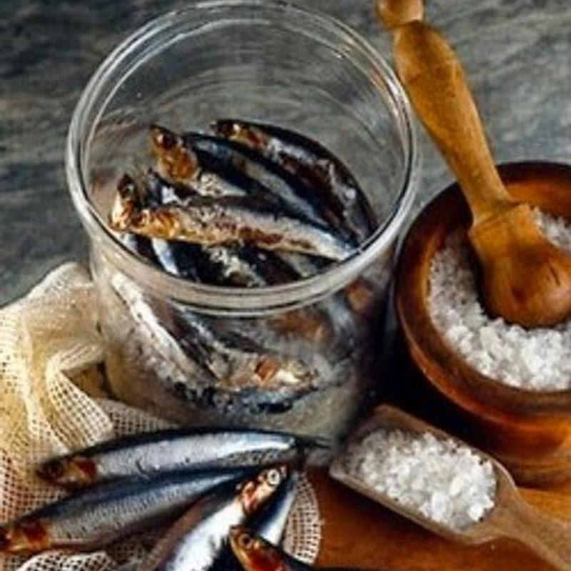 Ricettario genovese, il meglio della cucina ligure: acciughe sotto sale.