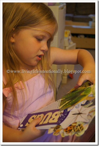 BUG Sensory Bin for Toddlers and Preschoolers