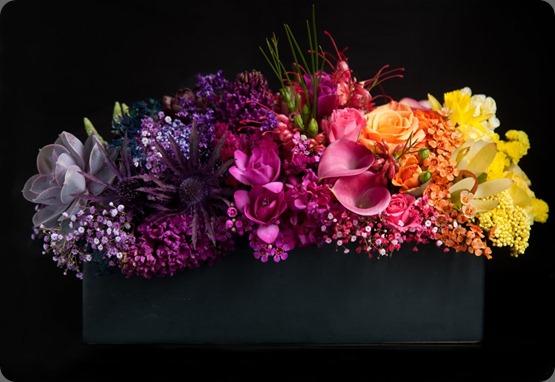 DSCF1648b bloom by Anuschka