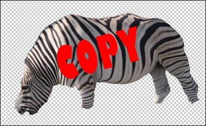 Zebra-cut