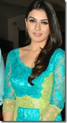Hansika Hot Photos at Something Something Movie Press Meet