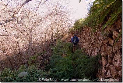 4870 Las Lagunetas-Los Arbejales