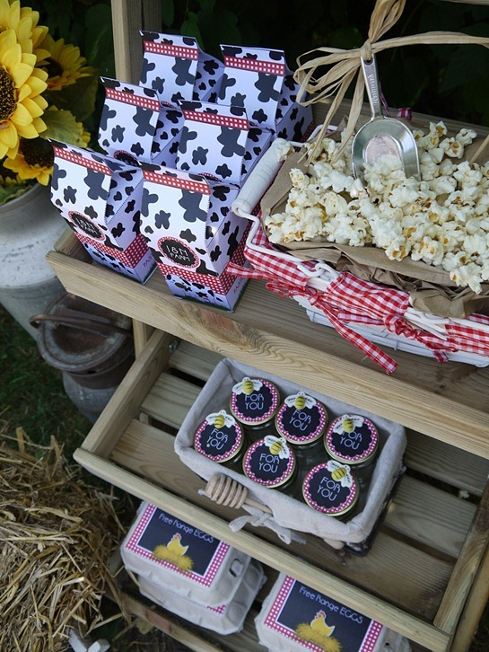 Barnyard Birthday - Favors Display