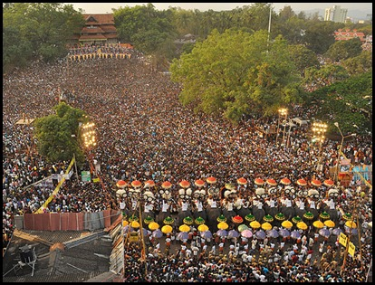 Crowds at Pooram
