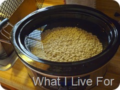 Cooking dried beans in the crock pot