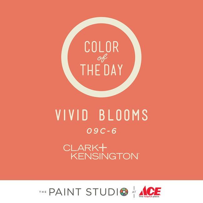PaintChips_650x650_0010_Vivid Blooms