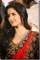 katrina_kaif_gorgeous_photo