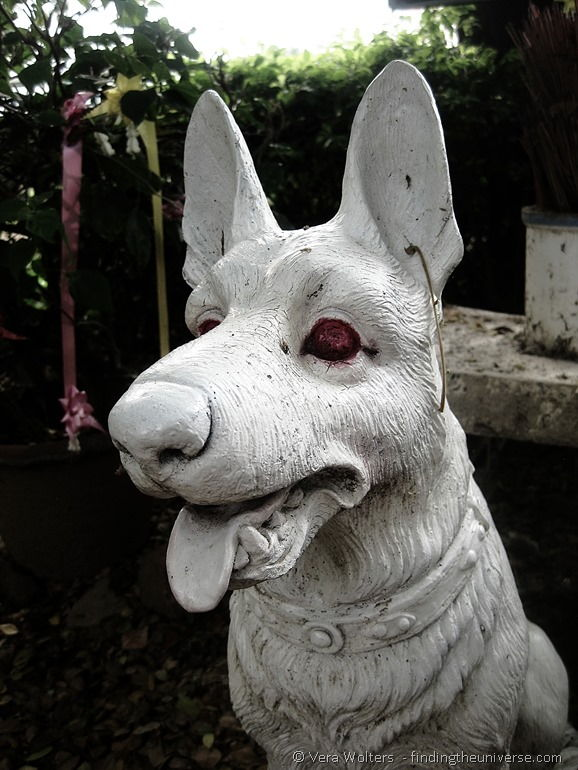 Dog statue Thailand