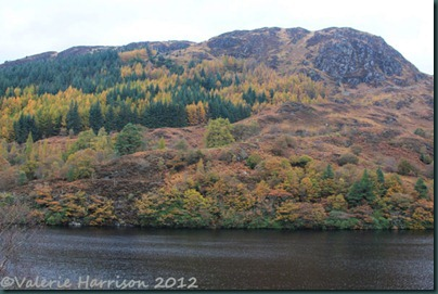 26-autumn-loch-trool