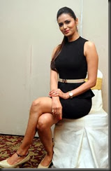 meenakshi_deekshith_stylish_photos