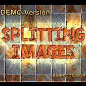 Splitting Images Demo