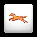Bus Eireann Times (Legacy) icon