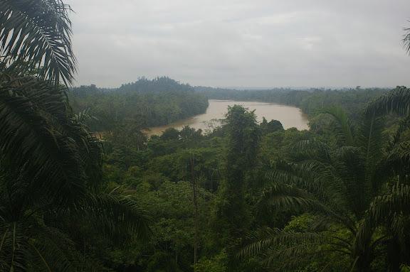 La Kinabatangan. Sukau, 12 août 2011. Photo : J.-M. Gayman