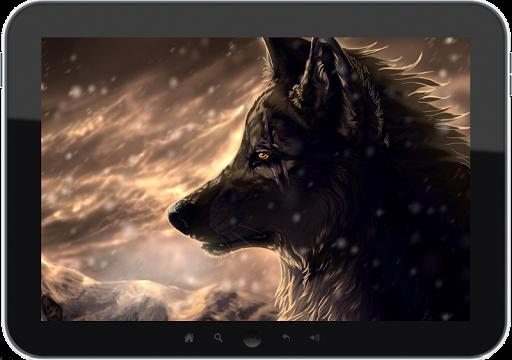 狼壁纸|玩娛樂App免費|玩APPs