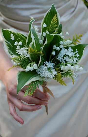 lily of the valley, arbor vitae, variegated hosta, and white lilac. the monkey flower group