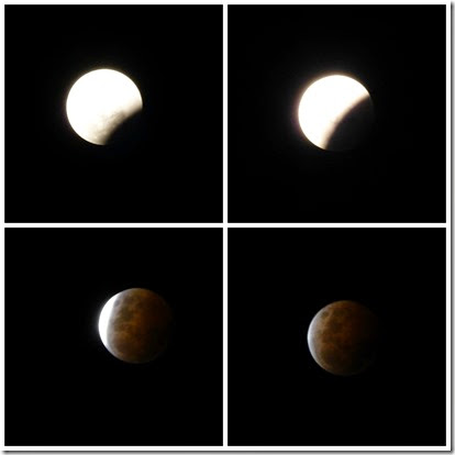 PicMonkey Collage - Lunar Eclipse October 14
