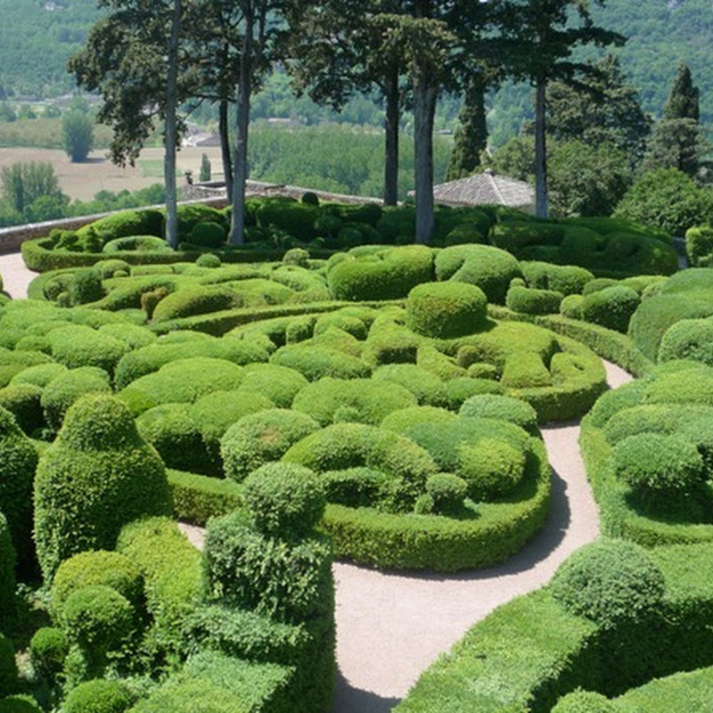 The Magnificent Gardens of Marqueyssac