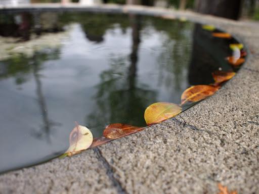 [写真]鹿島神社にて