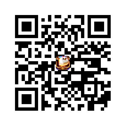 QR_Birzzle