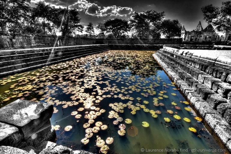 Lily pond Prasat Muang tam Thailand 4