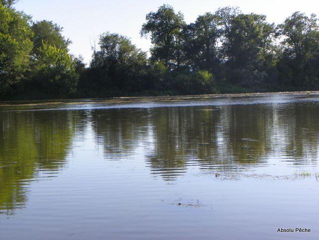 Loire rive droite en aval de Marclopt photo #1237
