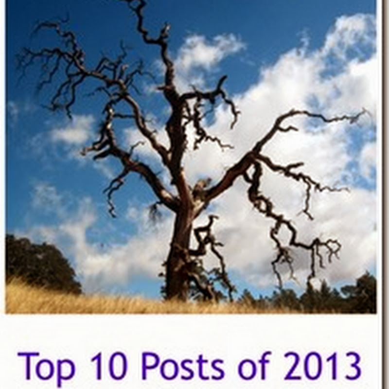 A Year in Review–Top 10 Posts of 2013
