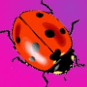 Cute Ladybugs Live Wallpaper