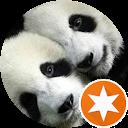 Panda Urban