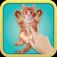 Tickle Cat 1.0