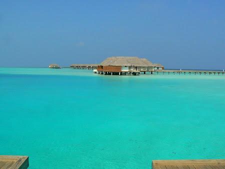 Plaje Maldive: Laguna Blue Maldive