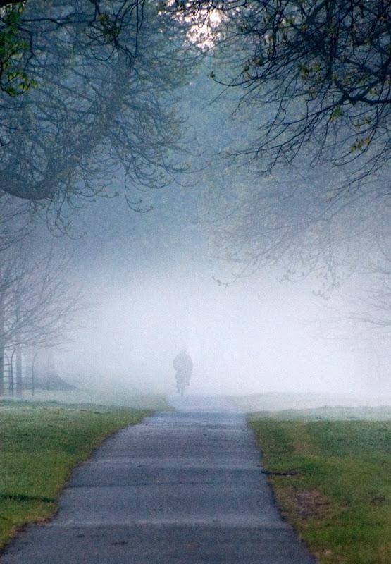 Into the mist-Jenny Fogarty.jpg