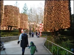 We Also Had Some Holiday Fun Went To The Lights At Gilroy Gardens Which Is Free If You Have A 2017 Membership It Was Lot Of