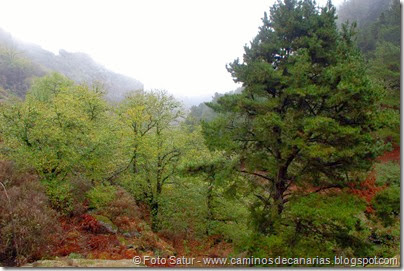 6851 Barranco Andén Cueva Corcho(Barranco Crespo)
