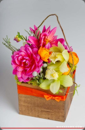 20120203-8705web (1) bloomers flowers