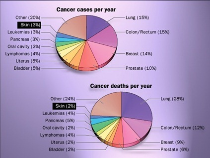 Cancer cases & death per year--skin